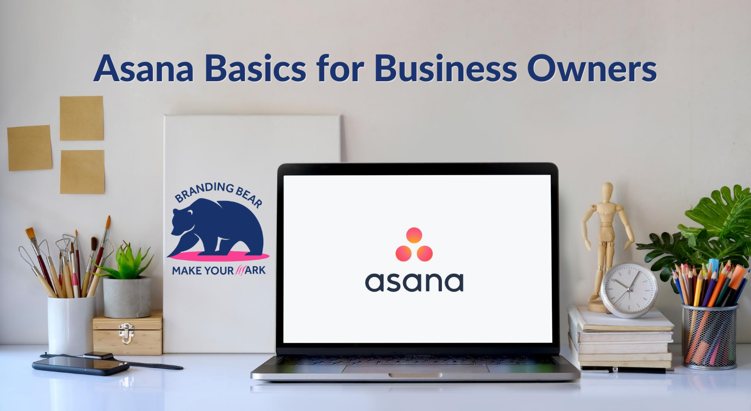 Asana Basics for Business Owners